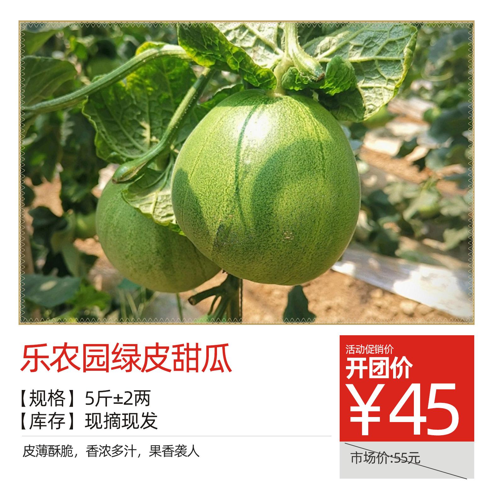 乐农园绿皮甜瓜