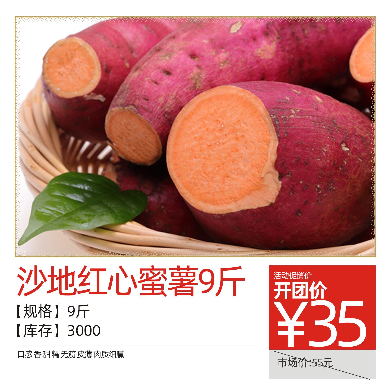 沙地红心蜜薯9斤