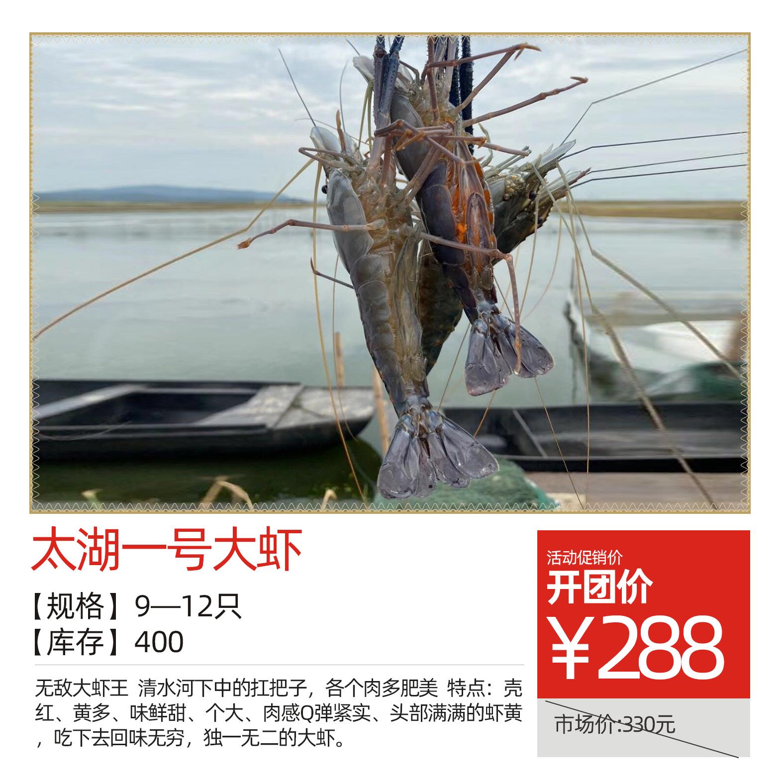 太湖一号大虾